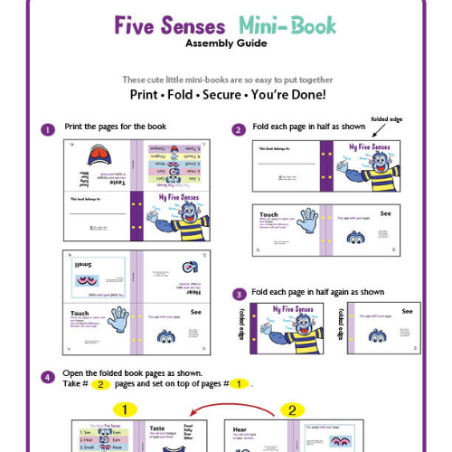 Second Additional product image for - The Five Senses