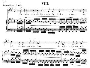 und wüssten's die blumen op.48 no.2, low voice in f sharp minor, r. schumann (dichterliebe). c.f. peters.