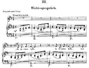 waldesgeschpräch op.39 no.3, low voice in d major, r. schumann (liederkreis). c.f. peters.