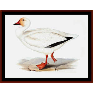 snow goose - wildlife cross stitch pattern by cross stitch collectibles