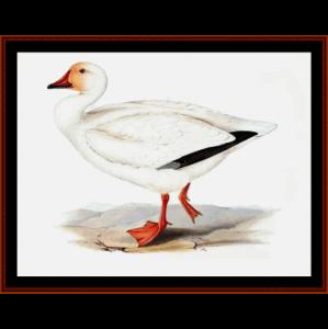 snow goose - wildlife cross stitch pattern by cross stitch collectibles