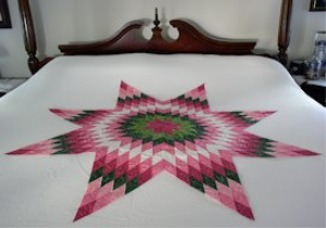 Laura's Lone Star Machine Embroidery Project VP3 | Crafting | Embroidery