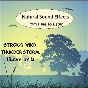 sound effects vol.1 wind, thunder storm, heavy rain