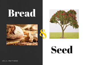 bread and seed 3 part series