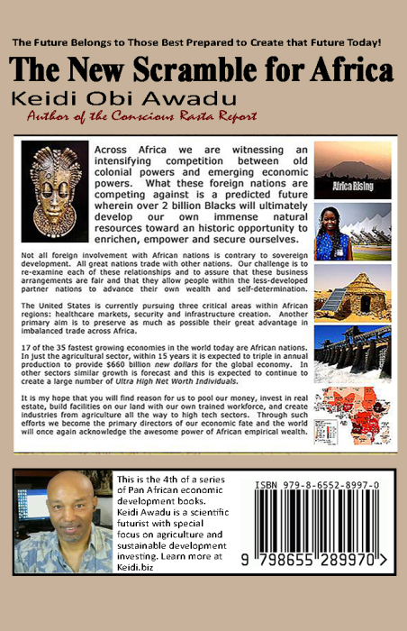 First Additional product image for - The New Scramble for Africa, eBook by Keidi Awadu
