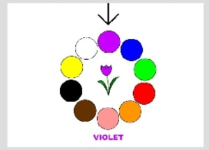 FLP - Les couleurs | Documents and Forms | Other Forms