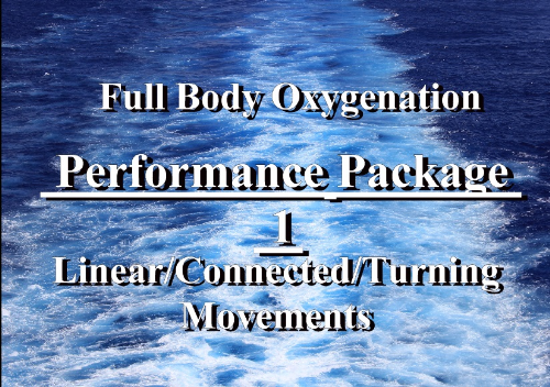 First Additional product image for - Performance Movement Package 1 Windows Media Video-Linear, Turning, Connecting