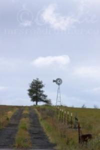 oregon backroad windmill