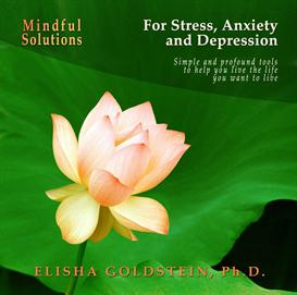 Mindful Solutions for Stress, Anxiety, and Depression | Audio Books | Self-help