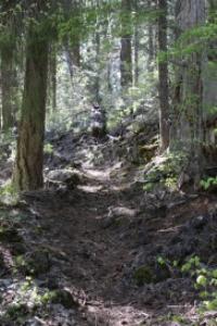 lava rock hiking trail oregon