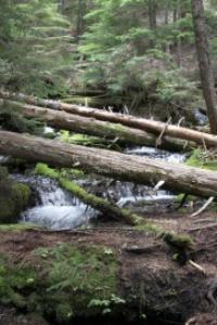cascade mountain cascades