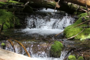 cascades small waterfalls