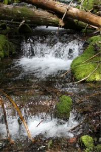 water falling in the cascade mountains
