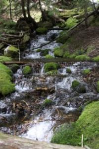 cascade moutains cascade
