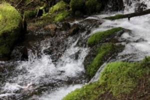 cascades of the cascade mountains