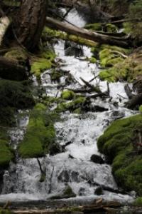hiking the cascade mountain cascades