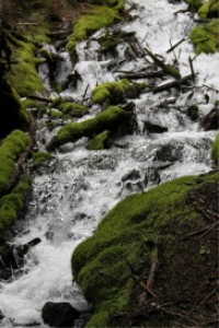 cascades falling in oregon