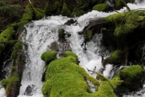 water falling in oregon