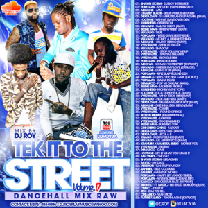 dj roy tek it to the street dancehall mix vol.17 2015
