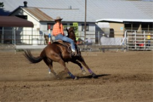 around we go horse and rider
