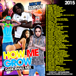 dj roy how me grow dancehall mixtape 2015