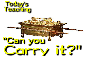 can you carry it?