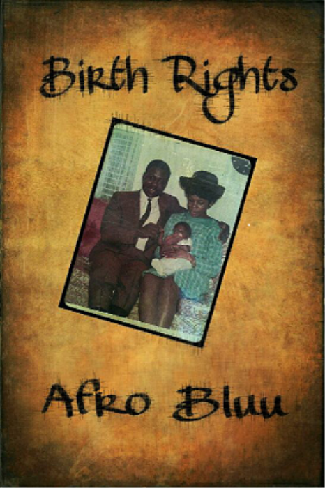 Second Additional product image for - Afro Bluu  Birth Rights