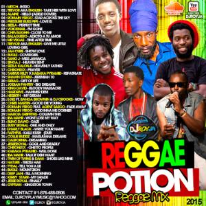 dj roy reggae potion reggae mix  2015