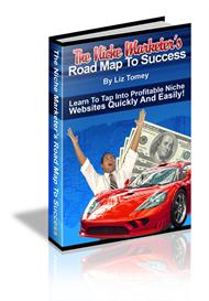 the niche marketers road map to success (mrr)