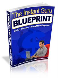 the instant guru blueprint (mrr)