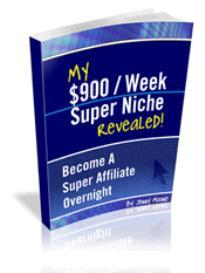 $900 a week super niche revealed