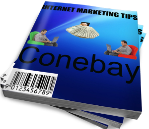 how to succeed in internet marketing