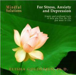 ebook: mindful solutions for stress, anxiety, and depression