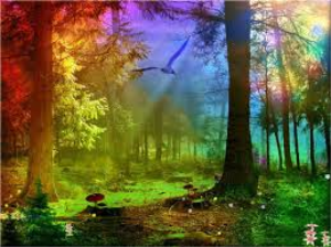 the thicket - chase the rainbow