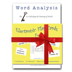 word analysis and flashcards bundle