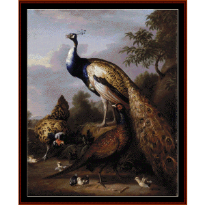 peacock - tobias stranover cross stitch pattern by cross stitch collectibles