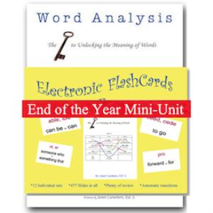 word analysis mini-unit