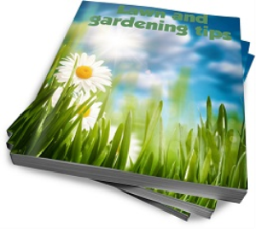 First Additional product image for - Family related articles, exercise, garden, recipes eBooks bundle