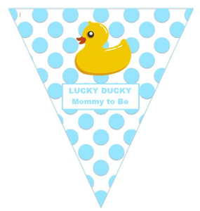 lucky ducky:  mommy to be (boy) - suggestions