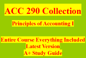 acc 290 week 5 wileyplus final examination
