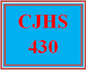 CJHS430 Week 3 Protective Order | eBooks | Education