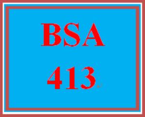BSA 413 Entire Course | eBooks | Education