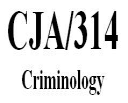 CJA 314 Week 2 Learning Team Paper – Biological Criminal Behavior | Crafting | Cross-Stitch | Wall Hangings