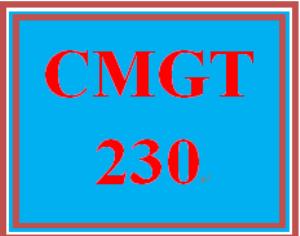 CMGT 230 Week 3 Learning Team Organizational Guidance Document, Phase 2 | eBooks | Education
