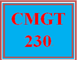 CMGT 230 Week 5 Learning Team Final Team Paper | eBooks | Education