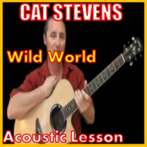 learn to play wild world by cat stevens