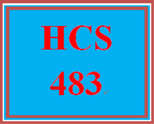 HCS 483 Week 3 Information System Briefing | eBooks | Education