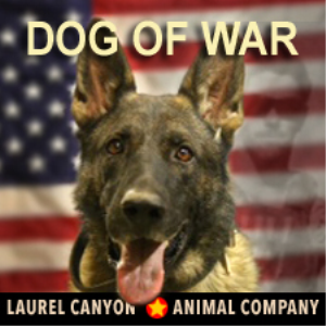 I'm A Dog of War | Music | Country