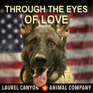 Through The Eyes of Love | Music | Country