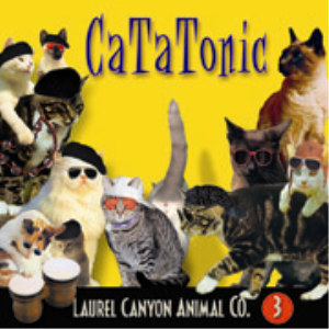 Cat-A-Tonic | Music | Rap and Hip-Hop